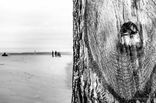 Beach of Wissant